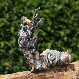 Chris-Coe-Caterpillar